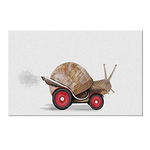 (YOLIYANA Funny Durable Door Mat,Speedy Snail Like Car Racer on Wheels Success Ambition Goal Creativity Concept Decorative for Home Office,17.7
