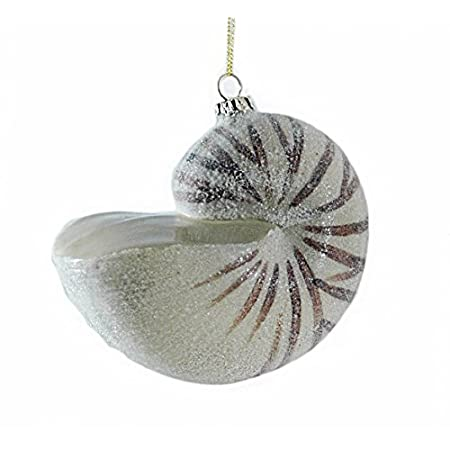 41yKuhOviXL._SS450_ Seashell Christmas Ornaments