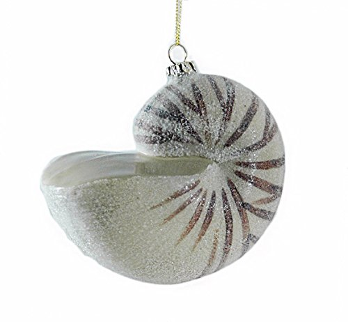 41yKuhOviXL Amazing Seashell Christmas Ornaments