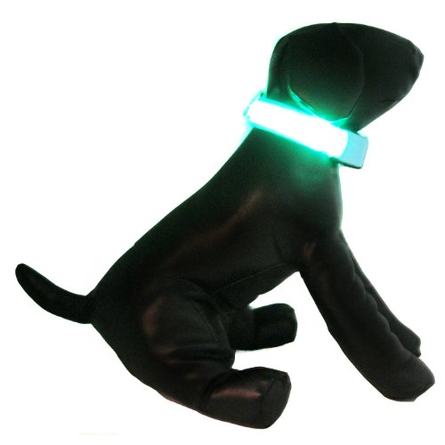 Alfie Pet – Blauw Flashing Pet Safety Collar – Collar Color: Baby Blue, LED Light Color: Green, Size: XL, My Pet Supplies