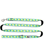 RC Pet Products Dog Leash, Pineapple Parade