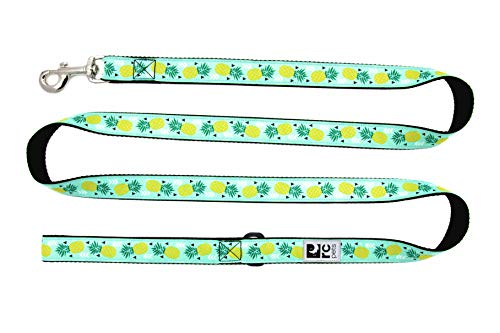 RC Pets 1  x 6 ft Dog Leash, Pineapple Parade
