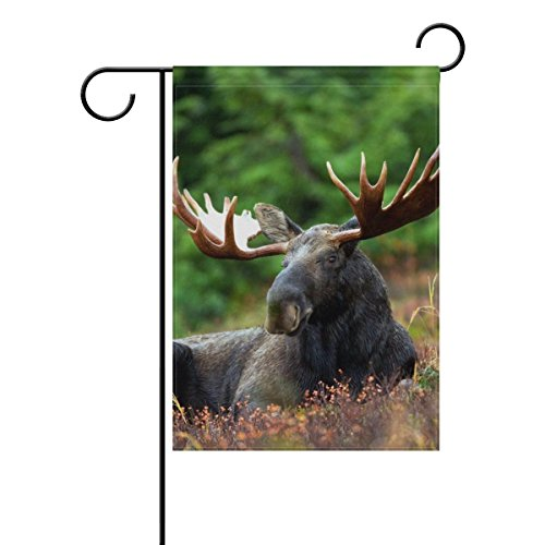 ClustersN Garden Flag Banner Moose Moose-Rack Male Bull Animal Nature Antlers 12x18 Inches Double Sided