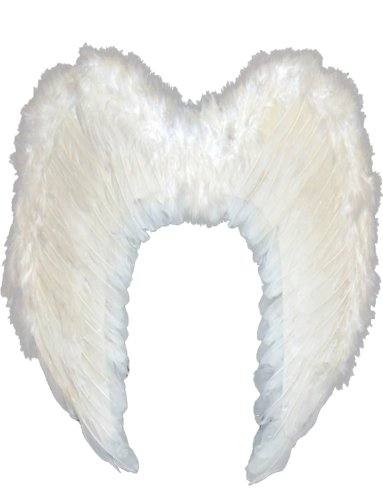 Angel Fairy Costumes (Yummy Bee Womens Angel Fairy Real Feather Costume Wings Deluxe Large 24