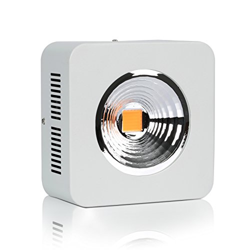 Roleadro-Full-Spectrum-2nd-Generation-COB-Led-Grow-Light