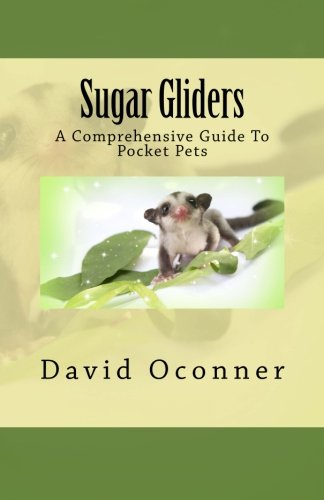 Sugar Gliders: A Comprehensive Guide To Pocket Pets