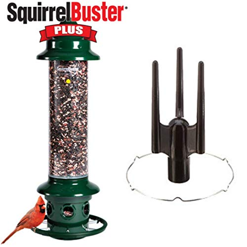 Brome Complete 1024 Squirrel Buster Plus Bird Feeder and Pole Adapter Kit