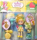 Strawberry Shortcake Lemon Meringue Playset, Baby & Kids Zone
