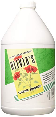 Olivia's Cloning Solution for Plants, 1-Gallon