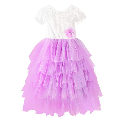 Toddler Baby Flower Girls Dress Princess Tulle Party Sleeveless Dresses Lace Backless Tutu A-line Beaded Skirt Pink (Spring Embroidered Skirt)