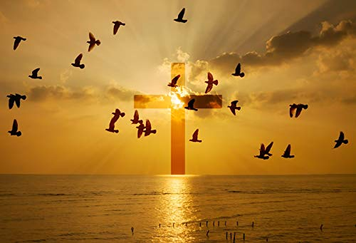 (Leowefowa 10x8ft Gold Glowing Cross at Sea Backdrop Beach Sunset Glow Flying Seagulls Backgroud Easter Festival Party Banner Christian Religious Activities Wallpaper Photo Studio Props)