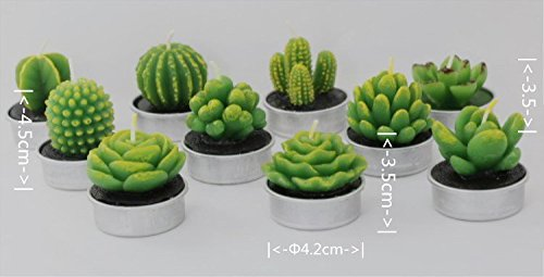 UUsave 12 Pcs Cactus Tealight Candles Decor Handmade Delicate Succulent Cactus Candles for Valentine's day Birthday Party Wedding Spa Living Room Home Decoration (12) by UUsave (Image #7)