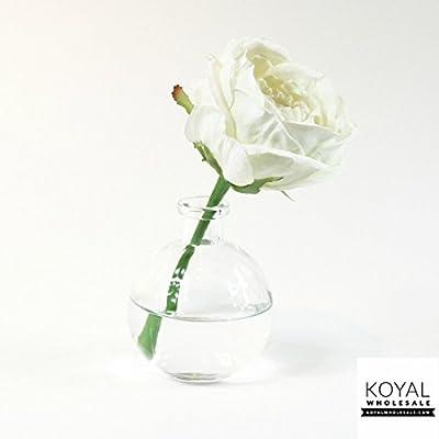 Amazon Koyal Wholesale 4 Glass Bud Vase Round Bottle Jar 4