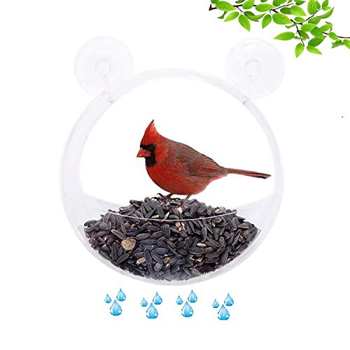 Clark Family Premium Clear Window Bird Feeder - Clear Acrylic Extra Large Bird Feeder - Unique Round Design - Extra Strong Suction Cups - Squirrel & Weatherproof - Great Gift Idea! ()