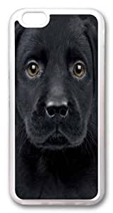 Black Labrador Puppy TPU Case Cover for iphone 6 plus and iphone 6 plus 5.5 inch Transparent