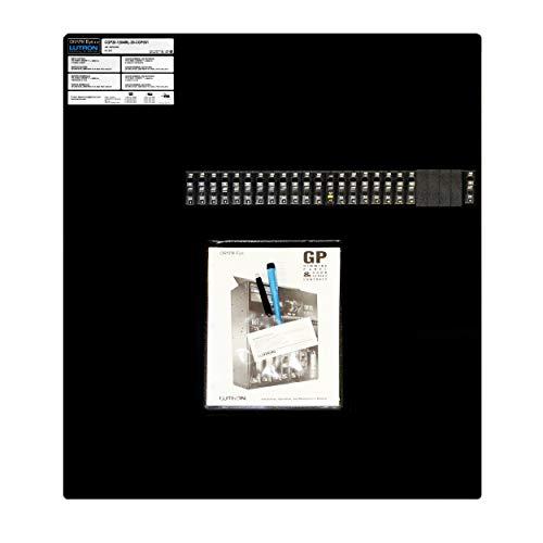 - Lutron CGP20-1204ML-20-CGP051 Grafik-Eye GP20 20-Zone Lighting Control Panel