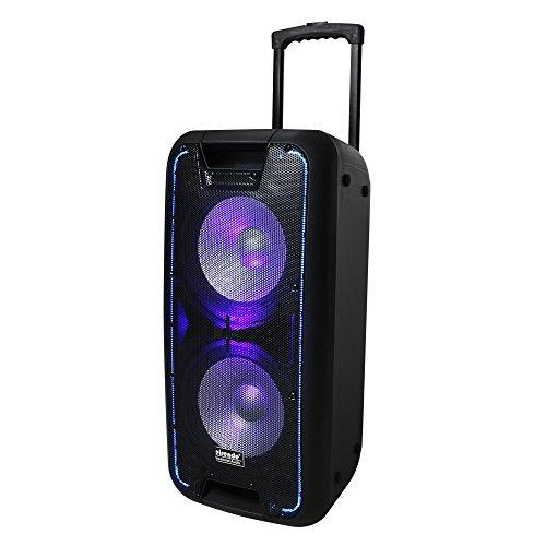Quantum QDJ210T Portable Speaker System
