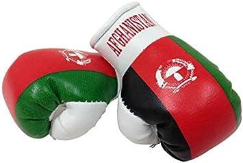 Sportfanshop24 Mini Boxhandschuhe Afghanistan 1 Paar 2 Stück Miniboxhandschuhe Z B Für Auto Innenspiegel Auto