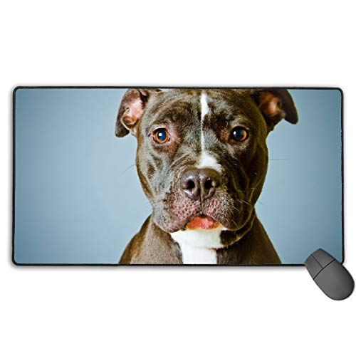 (GGlooking Mousemat A Silly Puppy Mouse Pad Gaming Mat Computer Mousepad Large Non-Slip Keyboard Desk Accessories,Office & School Supplies)