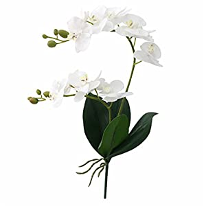 Artificial Flower Real Touch Latex 2 Branch Orchid Flowers With Leaves Wedding Decoration D 94