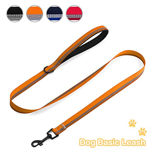 Basic Dog Leash Fashionable and Durable Dog Leash with Reflective Silk for Safety and Heavy Duty Mental Hook for Small Medium Large Dogs ... (Orange)