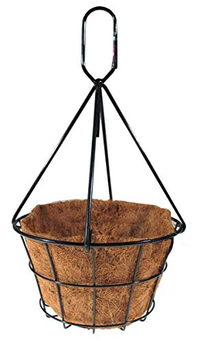Oregon Wire Products 72HB12BLKL 12 x 6 in. Heavy Duty Traditional Hanging Basket with Chain & Coco Liner44; Black - Pack of 10-25 Count