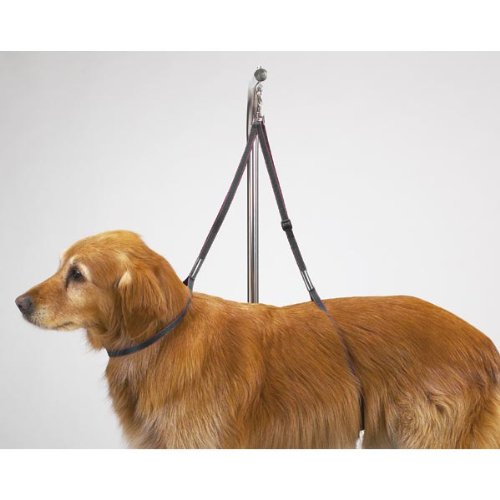 Dog grooming harness amazon top performance adjustable nylon table harnesses versatile nylon harnesses to safely secure dogs on tabletops while grooming 27 solutioingenieria Image collections