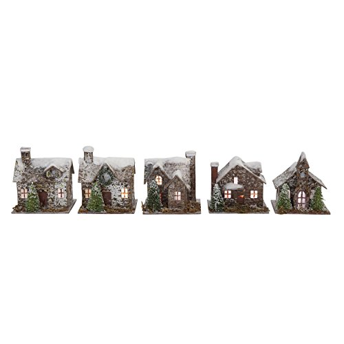 (Creative Co-op Snow Flocked Paper & Birch Bark Buildings with LED Lights (Set of 5 Styles))