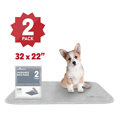 Paw Inspired Washable Pee Pads for Dogs, XL-Long (2 Pack - 34