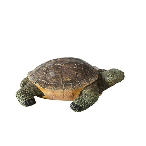 (WHW Whole House Worlds Baby Toby Turtle, Ultra-Realistic Outdoor Garden Tortoise Statue, Hand Sculpted Cast Poly Resin, Weather Resistant, 5 1/2 L x 4 1/4 W x 2 H Inches)