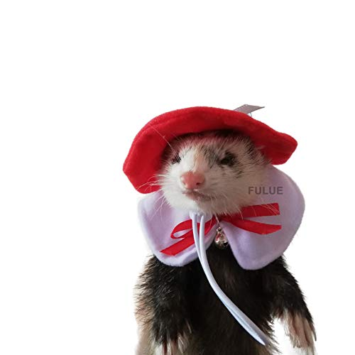 FULUE Ferret Guinea Pig Rat Hat and Collar Handmade (Sweater For Guinea Pig)