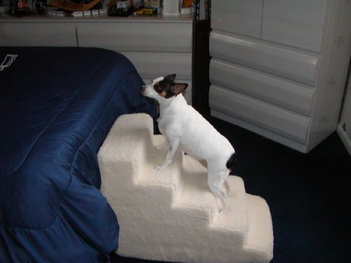 Pet Stairs Petstairz 5 Step High Density Foam Pet Step and Pet Stair with Beige Removable and Washable High Curly Pile Shearling Cover for Pets up to 50 Lbs. Please Take Into Consideration Your Pets Health,age, Agility,gate Stability,paw Length and Weigh