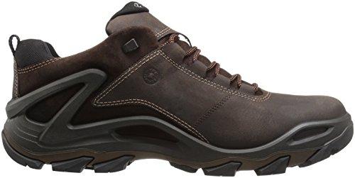 ECCO Terra Evo, Zapatillas de Deporte para Exterior para Hombre Marrón (Coffee/mocha)