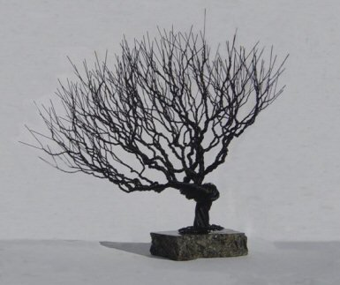 Bonsai Boy's Wire Bonsai Tree Sculpture - Natural Style
