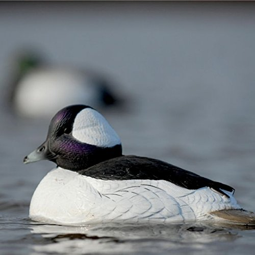 Hunting Gear Over-Size Buffleheads (1/2 Dozen) by Avery (Image #6)