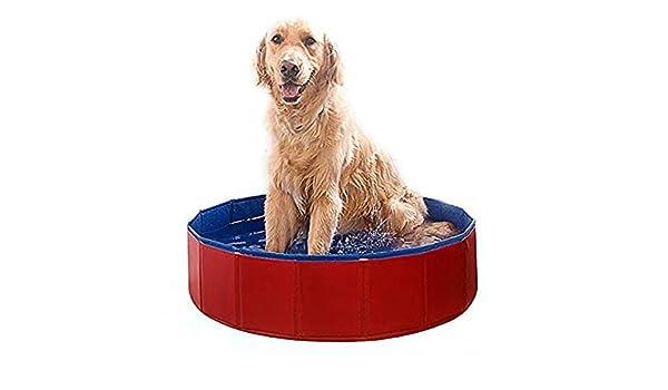 TO_GOO Piscina para Mascotas Piscina Hinchable Plegable para ...