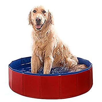 BanboYohi Piscina de Baño para Mascotas Plegable de PVC Plegable para Perros s:80 * 20cm: Amazon.es: Productos para mascotas