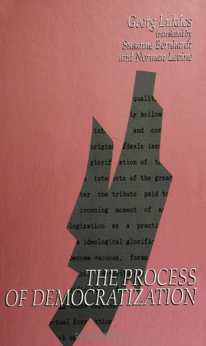 The Process of Democratization (SUNY Series in Contemporary Continental Philosophy)