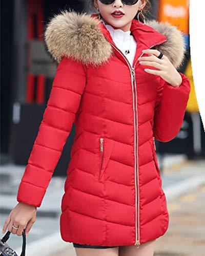 Fourrure L Chaud Trench Zhuikuna De vent Manteau Court Parka Veste Vêtements Coupe Femme Col Rouge ww60g