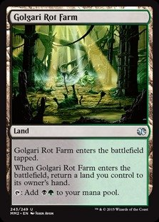 Magic: the Gathering - Golgari Rot Farm (243/249) - Modern Masters 2015 - Foil