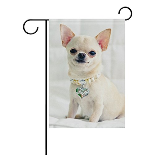 Mohado Smiling Cute Chihuahua Dog Garden Flag Yard Decoration 12 x 18 Inches Double Sided House Flag Banners Outdoor Lawn Decorations