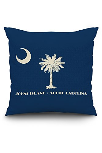Johns Island, South Carolina - State Flag - Letterpress (20x20 Spun Polyester Pillow, Custom Border) (South Carolina Barn Pottery)