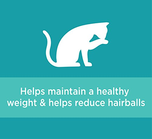 Iams PROACTIVE HEALTH Indoor Weight and Hairball Care Dry Cat Food, (1) 22 Pound Bag, Real Chicken in Every Bite by Iams (Image #8)