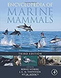 img - for Encyclopedia of Marine Science book / textbook / text book