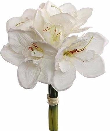 Amazon amaryllis silk flower bundle in white13 tall home amaryllis silk flower bundle in white13quot mightylinksfo