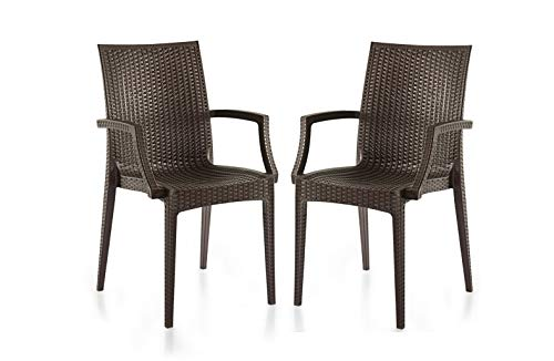 Varmora Modern Chair (Plastic, Brown, 2 Pieces)