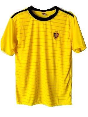 同封するキリン数学者?ネーム作成?大人用 A029 ベルギー 黄 18 ゲームシャツ パンツ付