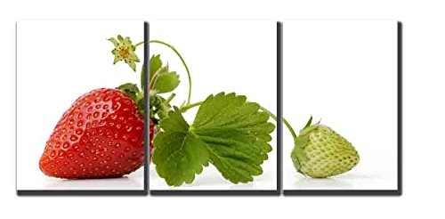 fruit kitchen wall decorations - 6