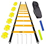 TOCO FERIDO 20ft Agility Ladder Set with 12 Rungs, 12 Sports Disc Cones, 4 Metal Pegs, 2 Resistance Bands, 1 Carry Bag for Soccer, Football, Speed Training and Agility Training