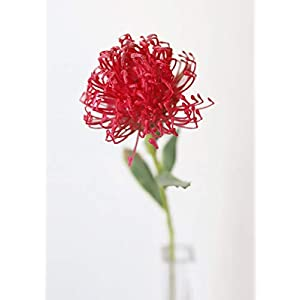 "Red Artificial Pincushion Protea - 21"" Tall 89"